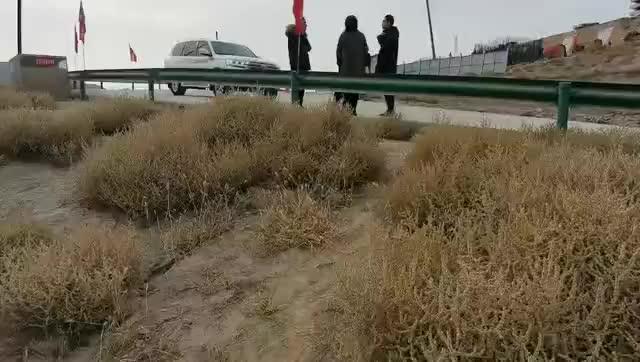 中科捷鼎抑尘剂视频展示