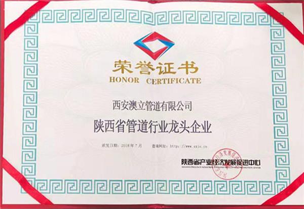 陕西省管道行业龙 头企业