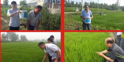 巩义客户合作土壤调理剂案例