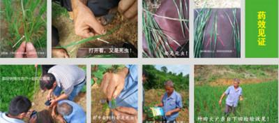 漯河客户合作土壤调理剂案例