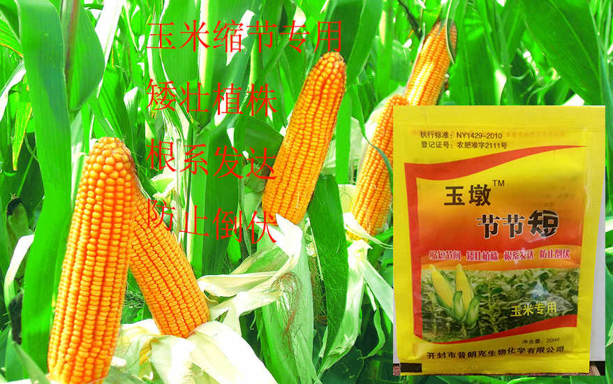 玉米缩节剂