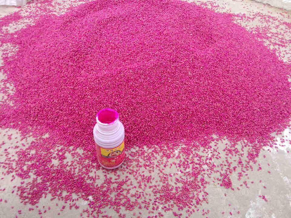 如何选用小麦拌种剂