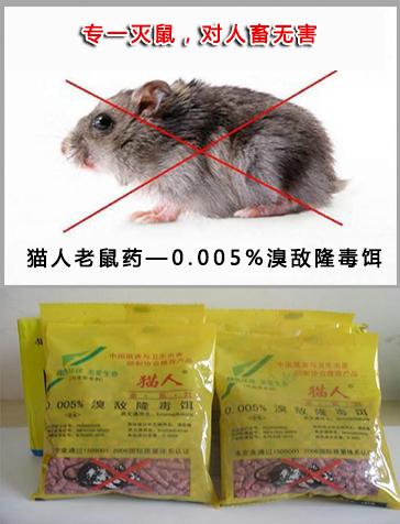 优质老鼠药批发