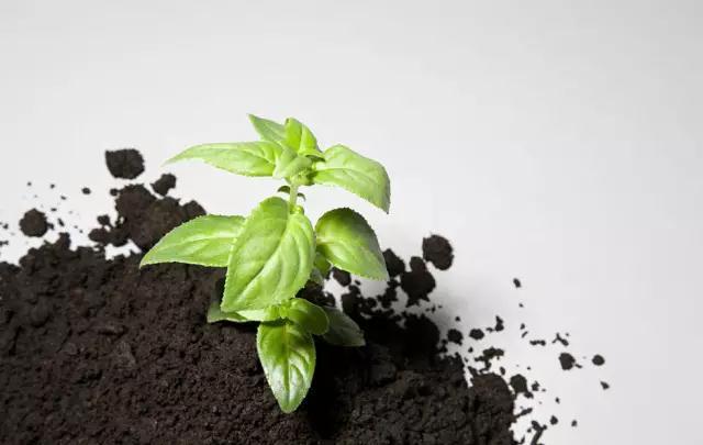 土壤调理剂厂家
