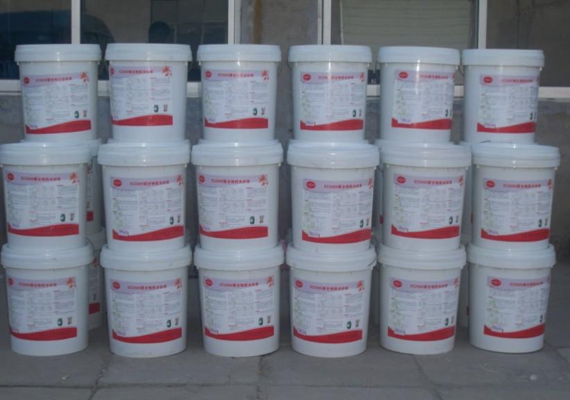 EC2000聚合物砂浆