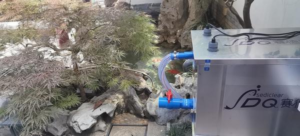 使用赛德清鱼池过滤器,水质清澈见底鱼儿健康成长