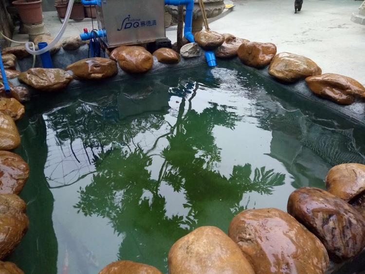 赛德清鱼池过滤器厂家
