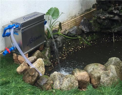 鱼池过滤器厂家讲解锦鲤繁殖的小常识