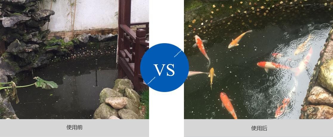 广东鱼池过滤器