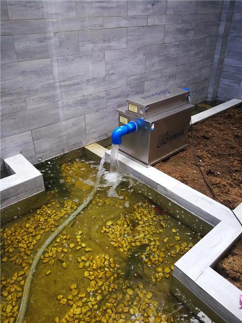 广东鱼池过滤器哪家好