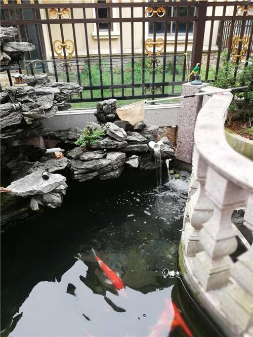 鱼池过滤器定制