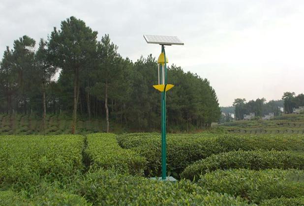四川太阳能杀虫灯安装成功案例