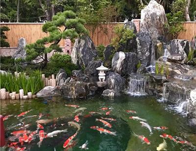 四川假山鱼池设计
