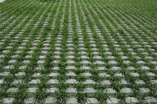 河南植草砖一般的尺寸规格都有哪些?井字植草砖有哪些优势呢?