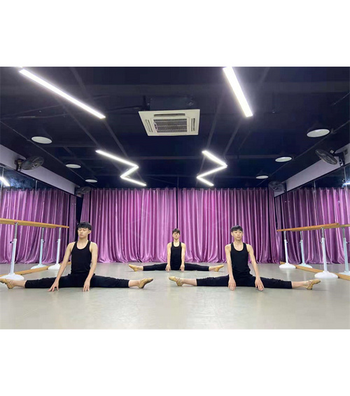 拉丁舞艺考培训