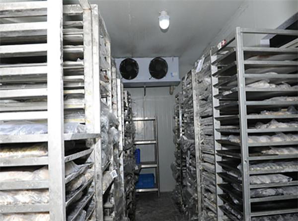如何才能够提高冷库的使用年限呢