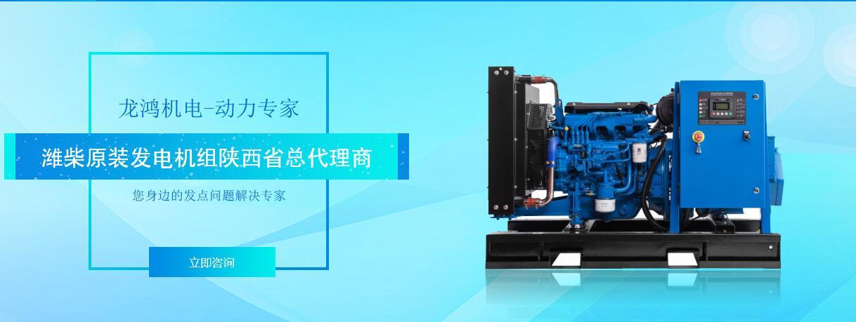 西安潍柴燃气机销售