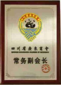 四川省广东商会常务副会长
