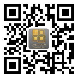 四川磊森环境艺术工程有限公司