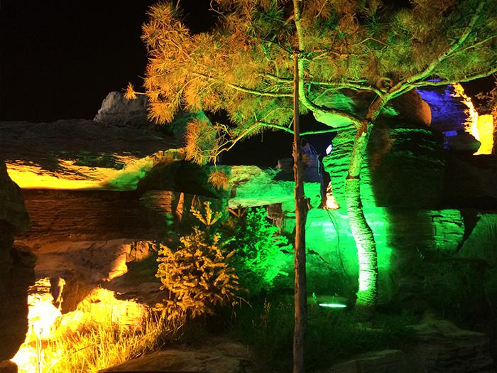 假山假树景观案例展示