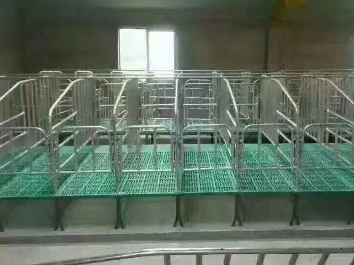 四川养猪设备-限位栏