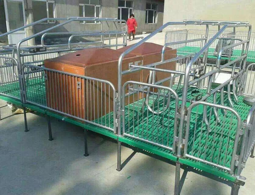 满堂壮畜牧机械为你介绍四川母猪产床的作用