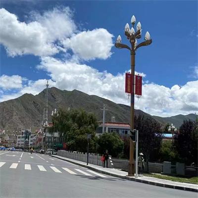 西藏玉兰灯安装实例