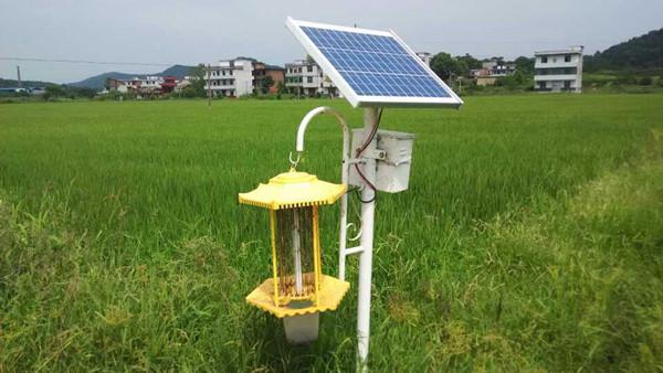 质量好的成都太阳能杀虫灯价格如何?