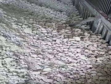 生石灰粉案例