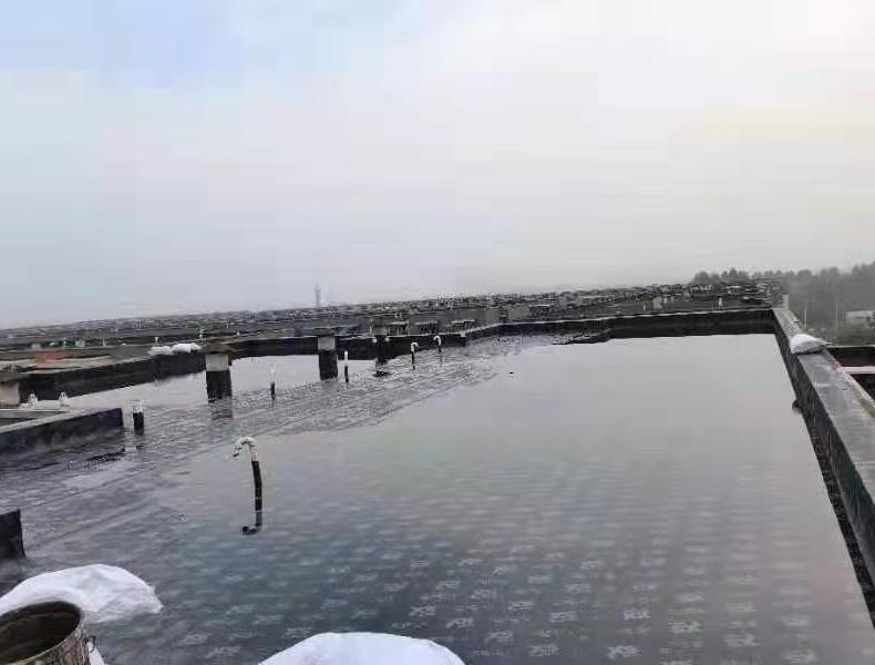 泸州市鑫阳钒钛钢铁有限公司重组整合和升级技改项目