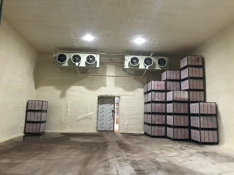 旬邑县5000吨苹果冷藏库