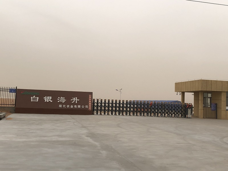 白银海升集团1000吨小番茄保鲜库