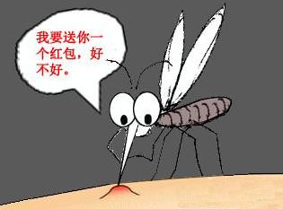 被蚊虫叮咬后四个止痒方法