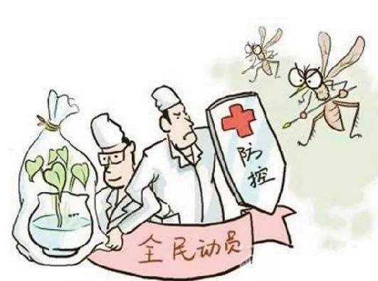 为彻底灭蚊蝇,这五点要注意!