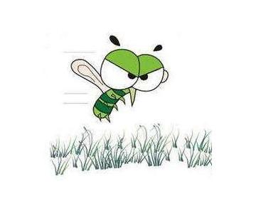 怎么灭蚊?轻松灭蚊六法?