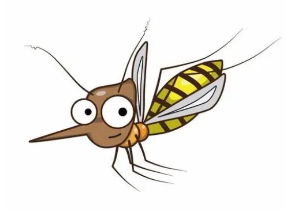 为什么蚊蝇类总是搓前两只脚?