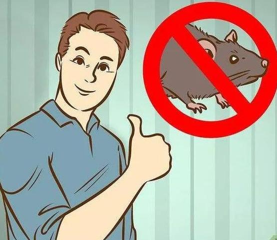 因地适宜的选择合适的灭鼠方法