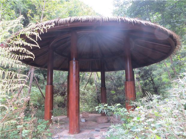 陕西防腐木生产