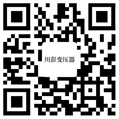 四川彭变电力设备有限公司