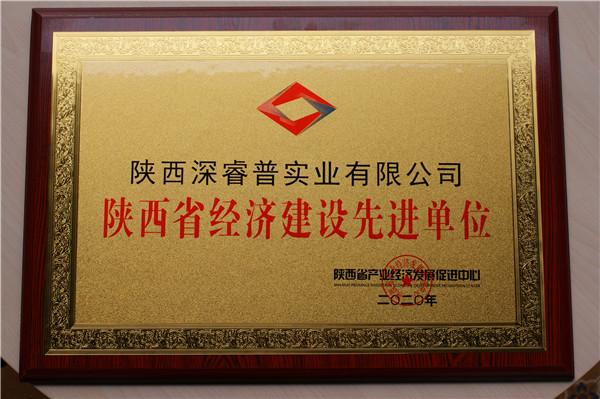 陕西省经济建设先 进单位