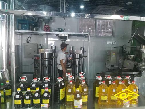 南阳奇丰机械-全自动榨油机