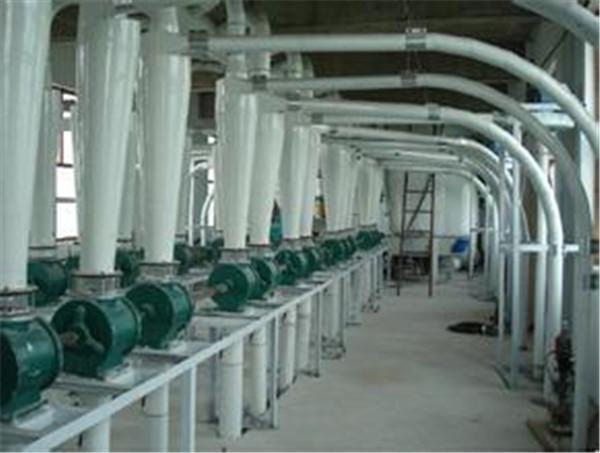 西安面粉厂使用琛鼎面粉袋