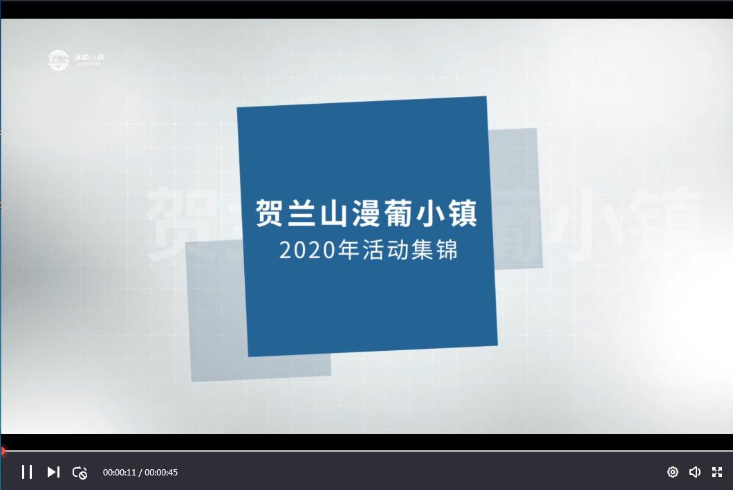 小镇2020年活动集锦