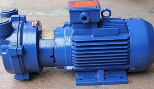 四川真空泵的使用方法以及其注意事项有哪些呢?