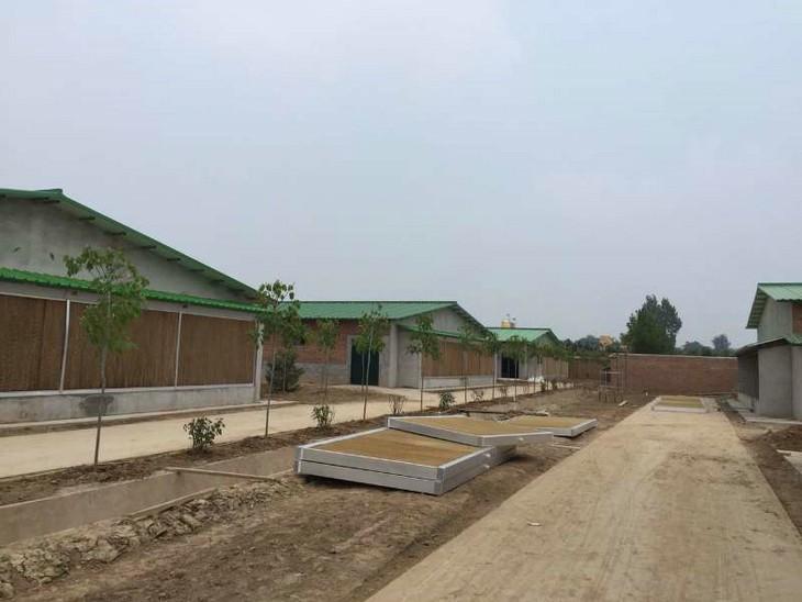 华县江渔牧业有限公司湿帘墙、负压米乐m6电竞降温系统