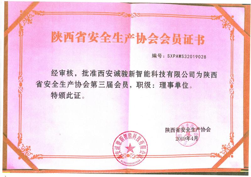 陕西安全生产协会证书