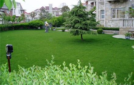 绿化养护公司