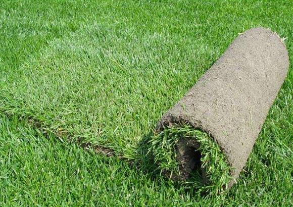 西安园林绿化养护工程