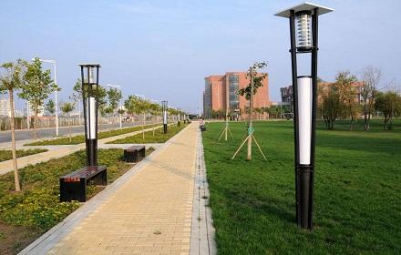 校园绿化设计工程
