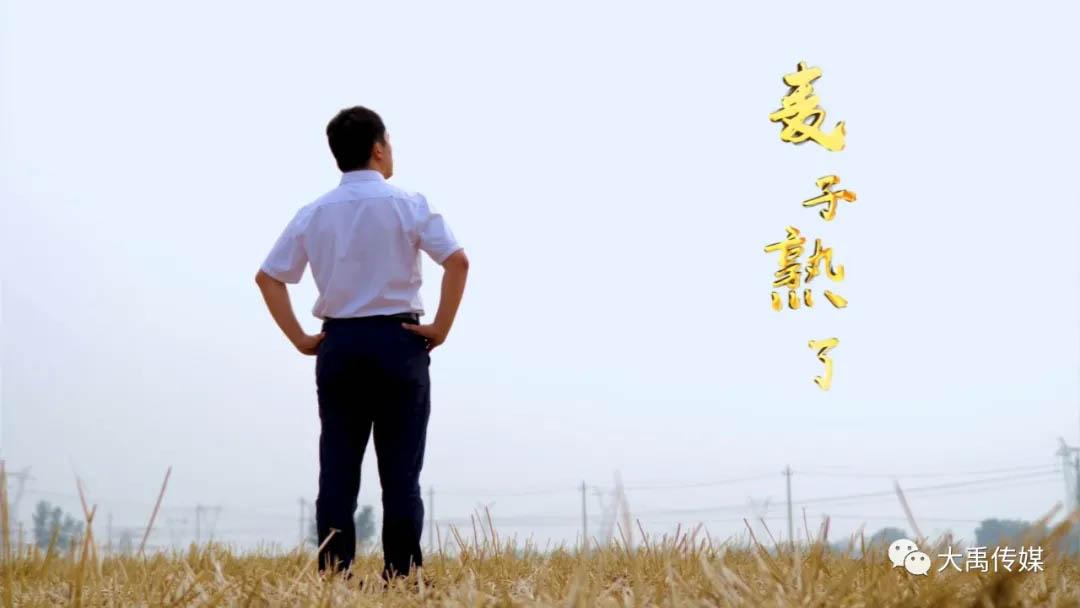 麥子熟了—駐馬店市委政法委駐上蔡吳宋村..書記王小華工作紀實